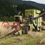 020911 Staatz Getreidearbeit2